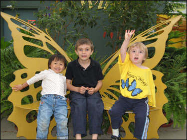 Magic Wings butterfly conservatory is one of the many family-friendly attractions neat the Birdsong B&B of Amherst